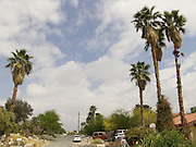 Residential street in a neighborhood in Palm Springs.