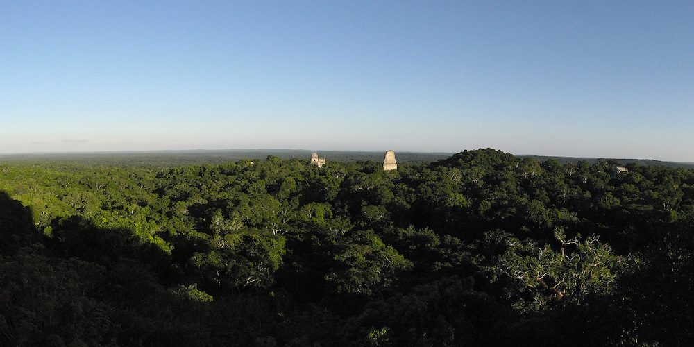 Pyramids rise above the jungle canopy in the Mayan site of Tikal, Guatemala.  Panoramic image made from multiple exposures.