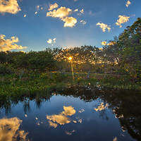 South Florida sunrise photography from nature photographer Juergen Roth showing the waterscape of Wakodahatchee Wetlands in magical sunrise light with a beautiful sunburst. Wako is an amazing nature area for viewing and photographing birds and other wildlife in Florida. <br />