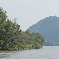 View of the bend of River Danube from a boat after the ease of the COVID-19 restrictions near Nagymaros, Hungary on June 29, 2020. ATTILA VOLGYI