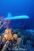 Atlantis Deep Explorer submarine (goes to 1000 feet), explores a deep reef with sponges and gorgonian corals, Grand Cayman, Cayman Islands, British West Indies ( Caribbean Sea )