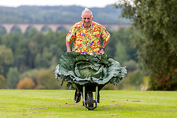 © Licensed to London News Pictures. 14/09/2018. Harrogate UK. Ian Neale with his prize winning heaviest cabbage that weighed 30.2kg at the Giant Vegetable Competition today at the Autumn Harrogate Flower Show in Harrogate. Photo credit: Andrew McCaren/LNP