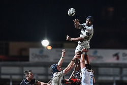 Maxime Mbanda of Zebre claims the lineout<br /> <br /> Photographer Craig Thomas/Replay Images<br /> <br /> Guinness PRO14 Round 7 - Dragons v Zebre - Saturday 30th November 2019 - Rodney Parade - Newport<br /> <br /> World Copyright © Replay Images . All rights reserved. info@replayimages.co.uk - http://replayimages.co.uk