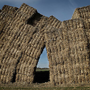 Straw bales near Estella. Navarre. . Spain . The WAY OF SAINT JAMES or CAMINO DE SANTIAGO following the French Route, between Saint Jean Pied de Port and Santiago de Compostela in Galicia, SPAIN. Tradition says that the body and head of St. James, after his execution circa. 44 AD, was taken by boat from Jerusalem to Santiago de Compostela. The Cathedral built to keep the remains has long been regarded as important as Rome and Jerusalem in terms of Christian religious significance, a site worthy to be a pilgrimage destination for over a thousand years. In addition to people undertaking a religious pilgrimage, there are many travellers and hikers who nowadays walk the route for non-religious reasons: travel, sport, or simply the challenge of weeks of walking in a foreign land. In Spain there are many different paths to reach Santiago. The three main ones are the French, the Silver and the Coastal or Northern Way. The pilgrimage was named one of UNESCO's World Heritage Sites in 1993. When there is a Holy Compostellan Year (whenever July 25 falls on a Sunday; the next will be 2010) the Galician government's Xacobeo tourism campaign is unleashed once more. Last Compostellan year was 2004 and the number of pilgrims increased to almost 200.000 people.