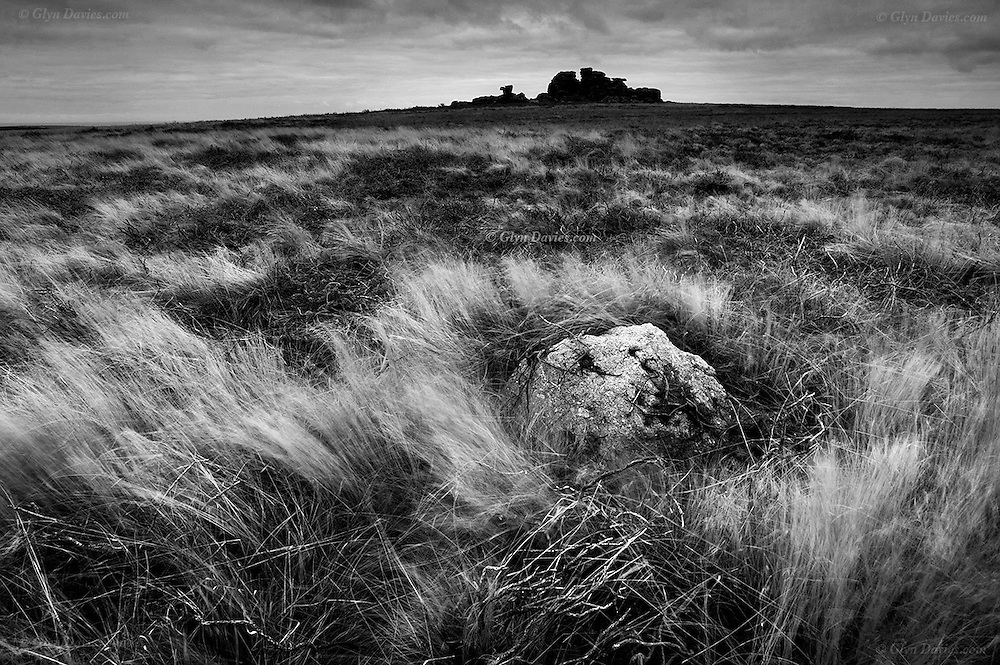 I could see this Tor from miles away, in every direction! It loomed, dark and strange, like a battleship on the horzon. As I got closer, it really was isolated from everything else. Only masses of wind blown grass, tangled brush wood, and hidden holes prevented access. It was a very spritual place for me, and finally climbing to it's dark, slightly green top, I felt privileged to be there, surveying the surrounding lands right down to the Atlantic.