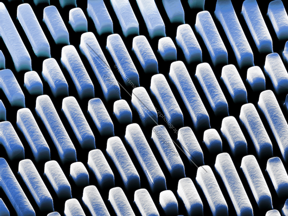 This is a scanning electron microscope image of a special surface modeled after the skin of sharks.  The numerous bends and indents make the growth of bacteria very difficult. Each structure is 2 um wide and the overall magnification is 2200x when printed 10 cm wide.