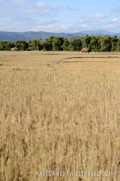 Rice fields on the way to Site 3 of the Plain of Jars in Laos.