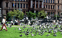 South Africa - Pretoria - 28 May 2020 - A man walks past flying pigeons that have gathered at Church Square.<br /> <br /> Picture: Thobile Mathonsi/African News Agency(ANA)