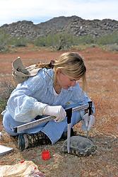Kathie Meyer Measuring Desert Tortoise