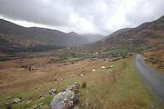 The Black Valley along the Wild Atlantic Way  in County Kerry Ireland.<br /> Photo: Don MacMonagle -macmonagle.com
