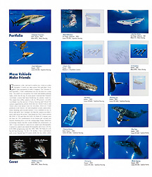 Blancpain Fifty Fathoms Watch 2009 Edition, advertising book, portfolio, editorial use, Germany, Image ID (from top left): Galapagos-Shark-0013 (double page), Mako-Shark-Shortfin-0009-V (full page), Blue-Shark-0008 (double page), Oceanic-Whitetip-Shark-0101 (double page), Spinner-Dolphin-Hawaiian-0011 (full page), Pygmy-Killer-Whale-0004 (half page), Sperm-Whale-0008-C (double page), Humpback-Whale-0370 (full page), Humpback-Whale-0217 (full page), Humpback-Whale-0376 (double page), Spotted-Dolphin-Atlantic-0004 (back cover), Spotted-Dolphin-Atlantic-0001-V (cover), Humpback-Whale-0382 (double page),  Humpback-Whale-0352 (double page)
