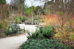 The Winter Garden at Dunham Massey