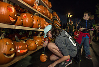 Katie Swart lights the jack o lanterns from local elementary schools at the Bank of NH parking lot during Pumpkin Fest Saturday evening.  (Karen Bobotas/for the Laconia Daily Sun)