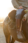 Detail of Gaucho's boot and saddle, Estancia Huechahue, Patagonia, Argentina, South America