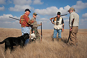 Experienced hunters and close friends Joe Moores, Timmy Stein, Byron Grubb and John Davidson out on the North Dakota prairie grasslands shooting upland game birds near Minot, North Dakota, United States. Byron has been shooting for most of his life and puts considerable efforts into his hunting, efforts which reward him with wild game meats, none of which is wasted.