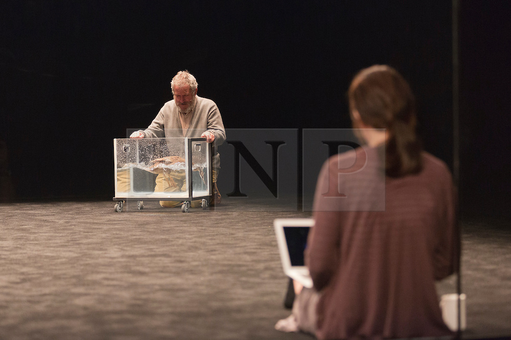 """© Licensed to London News Pictures. 24/10/2014. London, England. Richard Piper as Ekdal with Deirdre the Duck and Anita Hegh as Gina at the front. Belvoir Theatre from Sydney, Australia, present """"The Wild Duck"""" by Simon Stone and Chris Ryan after Henrik Ibsen from 23 October - 1 November 2014 at the Barbican Theatre, London. The play is part of the International Ibsen Season and is directed by Simon Stone. Photo credit: Bettina Strenske/LNP"""