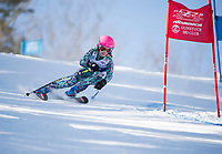 Francis Piche Invitational U12 girls first run with Gunstock Ski Club.  <br /> ©2017 Karen Bobotas Photographer