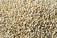 Quinoa seeds full frame close up.