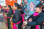 13 MAY 2012 - PHOENIX, AZ: Mariachi Rubor performing at the Puente office in Phoenix, AZ, on Mothers' Day.    PHOTO BY JACK KURTZ