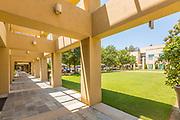 Grassy Area at Mission Viejo Civic Center