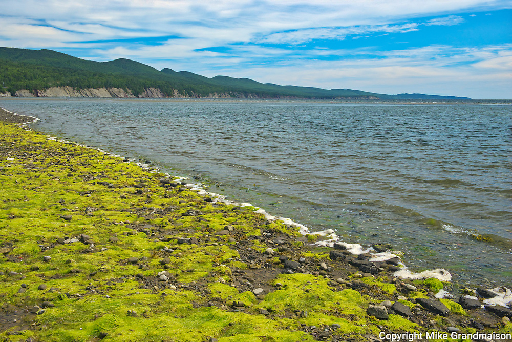 Low tide at Penouille Beach along the Gulf of St. Lawrence . Appalachians' northeasternmost tip in North America. <br />Forillon National Park<br />Quebec<br />Canada
