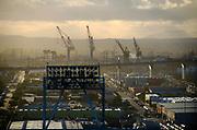 Cranes Downtown San Diego