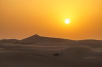 Sunset in the desert of Margham