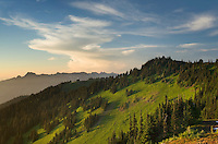 Alpine meadows at sunset, Mount Baker Wilderness Washington