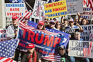 Pro-Trump Demonstration at LAX 2/4/2017