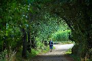 Pilgrim walks the Camino de Santiago Pilgrim's Way pilgrimage route to Santiago de Compostela in Galicia, Spain