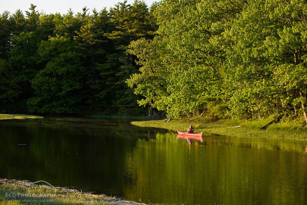 A woman kayaks on the upper reaches of the York River in York, Maine.  High tide.