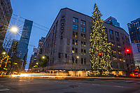Christmas Tree @ Intersection of Fourth Avenue, Olive Way & Stewart Street