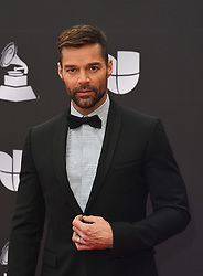 November 14, 2019, Las Vegas, NV, USA: LAS VEGAS, NEVADA - NOVEMBER 14: Ricky Martin attends the 20th Annual Latin Grammy Awards at the Grand Garden Arena - MGM Grand Hotel & Casino on November 14, 2019 in Las Vegas, Nevada. Photo: imageSPACE (Credit Image: © Imagespace via ZUMA Wire)