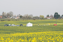 (c) Licensed to London News Pictures. 30/03/2014 Essex, UK. Police and AAIB continue to investigate the fatal crash of a YAK 52 light aircraft that crashed by the side of the A414 near Writtle yesterday afternoon. Police have not yet named the names of the pilot or passenger on board. Photo credit Simon Ford/LNP
