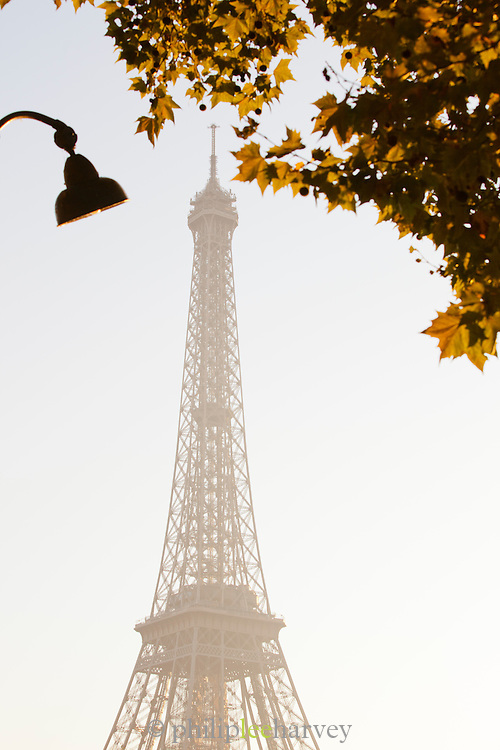 The iconic Eiffel Tower at dawn in autumn in Paris, France