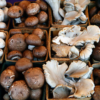 USA, California, Los Angeles, Local organic mushroom varieties at the Hollywood Farmer's Market'