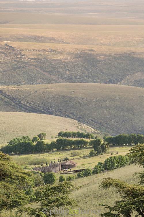 Landscape of savannah and distant view of Masai tribe grass huts in the Ngorongoro Highlands, Tanzania