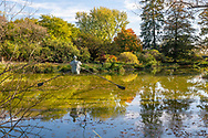 Old Westbury, New York, U.S. October 19, 2019. Rower, seen from behind, is a Jerzy Kędziora (Jotka) sculpture suspended by a wire over a pond on the Old Westbury Gardens estate. The bronze resin sculpture was seen during tour part of Closing Reception for the Polish sculptor Kędziora's Balance in Nature outdoor sculptures exhibit.