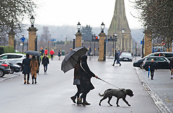 © Licensed to London News Pictures 16/01/2021.        Greenwich, UK. Dog walkers under their umbrella. The snowy weather turns to rain this afternoon with people getting out of the house from Coronavirus lockdown to exercise in Greenwich Park, London. Photo credit:Grant Falvey/LNP