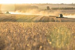 Colheita mecanizada de trigo ao por do sol na área rural de Cruz Alta, no Rio Grande do Sul. FOTO: Jefferson Bernardes / Agência Preview