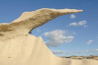 Wing sandstone formation, Bisti Badlands, Bisti/De-Na-Zin Wilderness, New Mexico