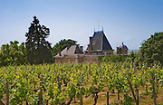 The vineyard and rooftop of Chateau Ausone Saint Emilion Bordeaux Gironde Aquitaine France