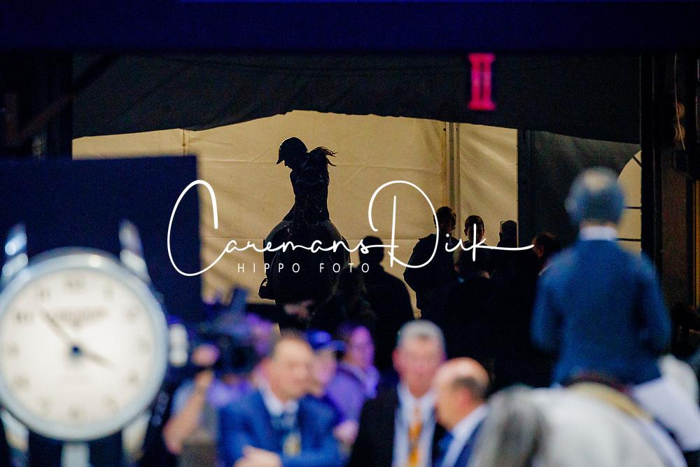 Goldstein Danielle, ISR, Caspar 13<br /> Longines FEI World Cup presented by Land Rover<br /> Vlaanderens Kerstjumping<br /> Memorial Eric Wauters<br /> Jumping Mechelen 2017<br /> © Hippo Foto - Dirk Caremans<br /> 30/12/2017
