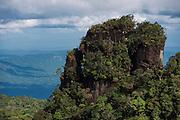 Tepuis (Flat-topped mountains)<br /> Kupinang<br /> Potaro-Siparuni Region<br /> Brazil Guyana border<br /> GUYANA<br /> South America