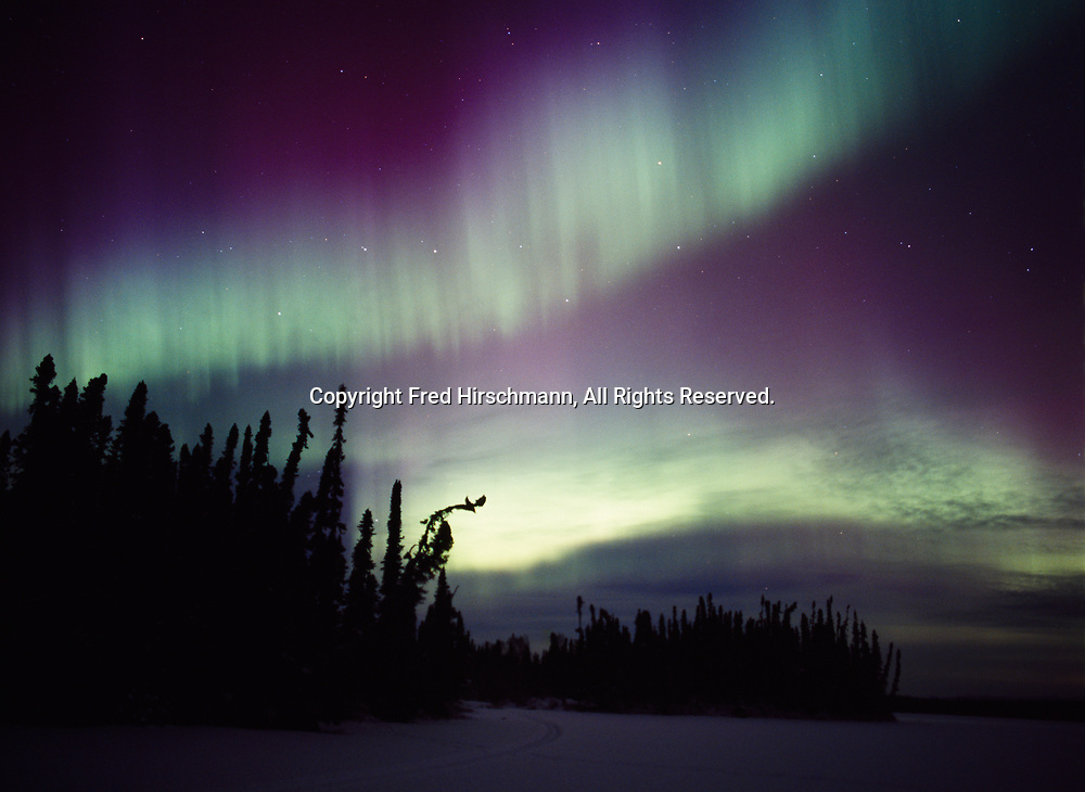 Green and purplish-red aurora above East Papoose Lake during the night of December 14, Upper Susitna Valley, Alaska.