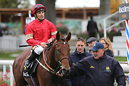 ELEGIAC (4) ridden by Silvestre De Sousa and trained by Mark Johnston enter the Winners Enclosure after winning The RaceBets Handicap Stakes over 1m 6f (£100,000)  during the Countryside Raceday, October Finale at York Racecourse, York, United Kingdom on 12 October 2018. Pic Mick Atkins