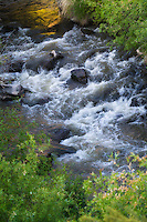 Cowiche Creek in Yakima County, WA is a critically important waterway for coho and chinook salmon, as well as the endangered steelhead trout. Also found in the same waterway system are beaver as well as a host of supporting plant communities and wildlife as it passed through desert-steppe terrain. This photograph was taken in spring as melting snow in the springtime creates a surge in snowmelt runoff through Cowiche Canyon.