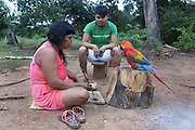 Surui woman making neclaces, watched by her parrot and a friend wearing a Google Earth Solidarity T-Shirt<br /><br />An Amazonian tribal chief Almir Narayamogo, leader of 1350 Surui Indians in Rondônia, near Cacaol, Brazil, with a $100,000 bounty on his head, is fighting for the survival of his people and their forest, and using the world's modern hi-tech tools; computers, smartphones, Google Earth and digital forestry surveillance. So far their fight has been very effective, leading to a most promising and novel result. In 2013, Almir Narayamogo, led his people to be the first and unique indigenous tribe in the world to manage their own REDD+ carbon project and sell carbon credits to the industrial world. By marketing the CO2 capacity of 250 000 hectares of their virgin forest, the forty year old Surui, has ensured the preservation, as well as a future of his community. <br /><br />In 2009, the four clans and 25 Surui villages voted in favour of a total moratorium on logging and the carbon credits project. <br /><br />They still face deforestation problems, such as illegal logging, and gold mining which causes pollution of their river systems