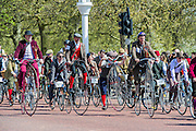 """Passing Buckingham Plaace. The Tweed Run 2015 - it's 7th annual British public bicycle ride through London's historic streets, with a prerequisite that participants are dressed in their best tweed cycling attire. There are also plenty of handle bar moustaches, penny farthings and Union Jacks. """"Guests can expect a leisurely day cycling, stopping at some of London's most iconic landmarks to enjoy a spot of tea, a picnic in the park and finally a jolly good knees-up in a beautiful art-deco ballroom for the Tweed Run closing ceremony. Starting at Trafalgar Square, the cyclists then embarked on a 12 mile scenic ride through London, stopping at traditional spots."""
