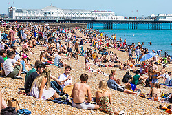 © Licensed to London News Pictures. 22/06/2019. Brighton, UK. Members of the public enjoy the hotel and sunny weather by spending time on the beach and Palace Pier in Brighton and Hove. Photo credit: Hugo Michiels/LNP